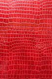 Red crocodile leather