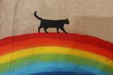 Fototapeta Tęcza - Black cat over the rainbow