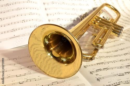 Plakat na zamówienie Trompete