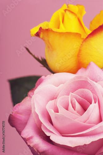 Róże w bukiecie