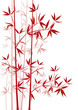 Bambus rot