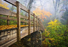Autumn Appalachian Trail Foggy...