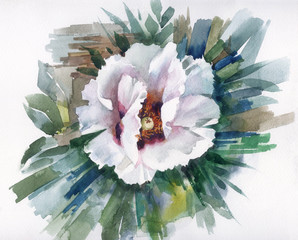 Panel Szklany Maki Watercolor Flower Collection: White Poppy