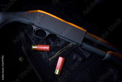 Obraz na plátně Mystery shotgun
