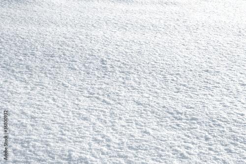 Fotomural Piste de ski (neige)
