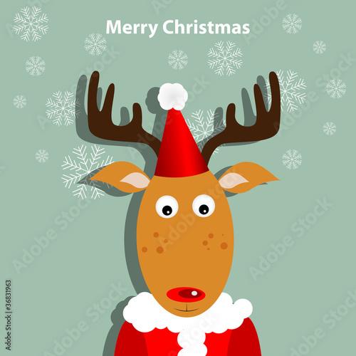 Foto auf AluDibond Ziehen Christmas deer