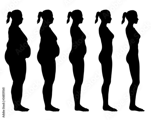 Fotografia, Obraz  Obese to Skinny Female Silhouette Side View