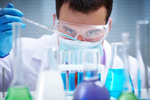 Fotografie, Obraz  Working in the laboratory