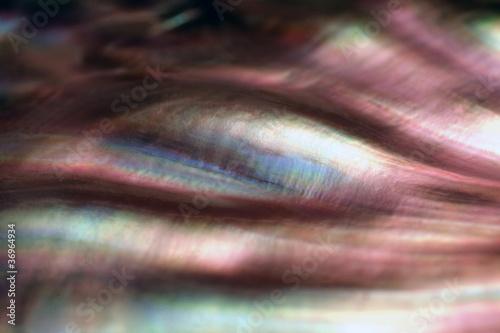 colorful nacre closeup Canvas Print
