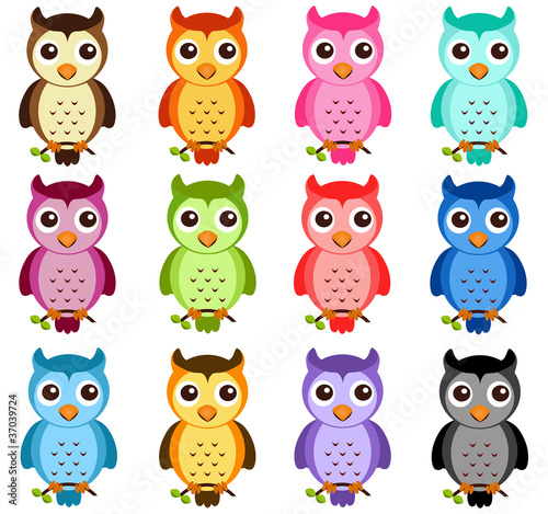 Poster Uilen cartoon A colorful Theme of cute vector Icons: Night Owls on white