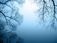 Seeufer Im Nebel Querformat