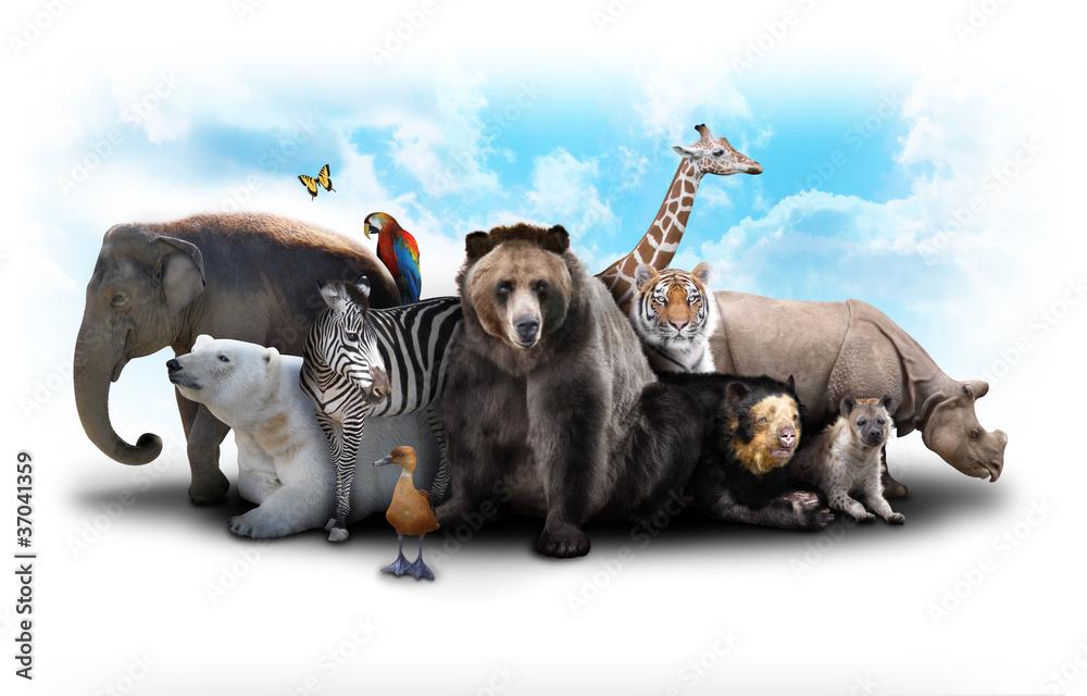 Fototapeta Zoo Animal Friends