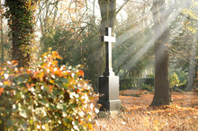 Friedhof 26