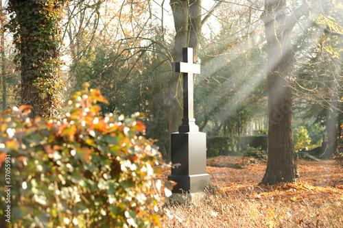 Valokuva  Friedhof 26
