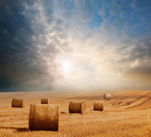 Hay Bails With A Dramatic Sky
