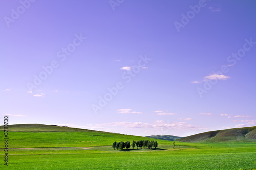 Farm grass plain under blue sky