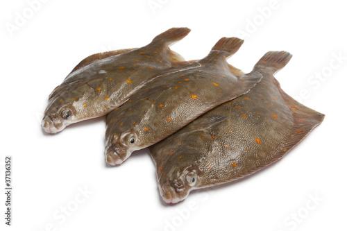 Tablou Canvas Fresh raw plaice fishes
