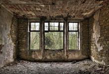 Overgrown Window In A Derelict Room