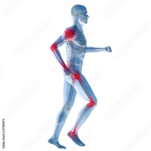 High resolution conceptual 3D human for anatomy Wallpaper Mural