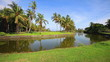 Beautiful tropical landscape with palmtrees and pond.