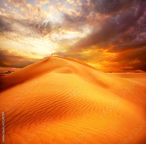 Fotomural Desert