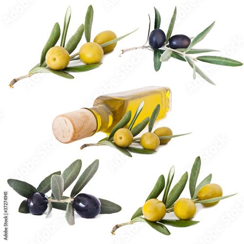 zbior-oliwek-i-oliwy-na-bialym-tle