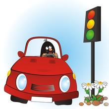 Mole And Car,  Vector Illustra...