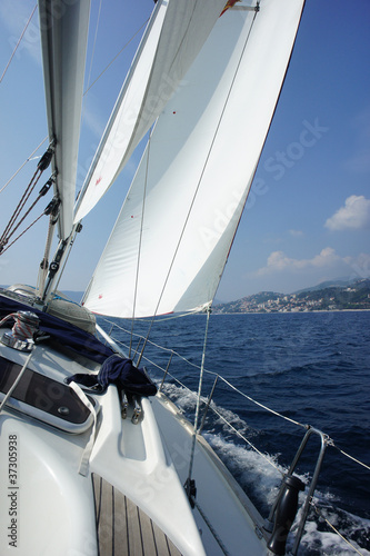 Garden Poster Sailing Яхта в море