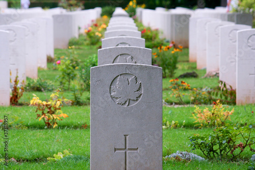 Photo sur Toile Cimetiere Canadian Soldier WW2 Gravestone Rows in Normandy, France