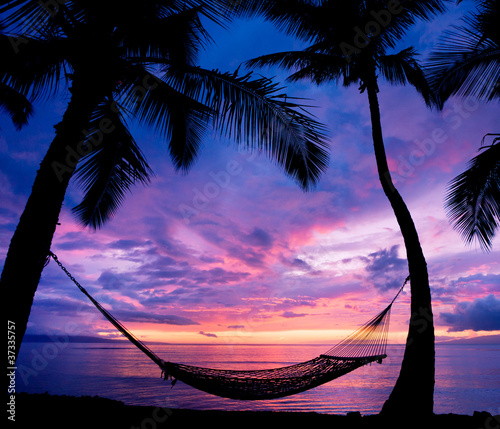 Foto-Leinwand - Beautiful Vacation Sunset, Hammock Silhouette with Palm Trees