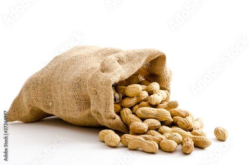 Erdnüsse im Jutesäckchen Canvas Print