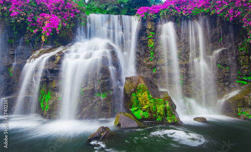 Photo Stands Waterfalls Waterfall in Hawaii