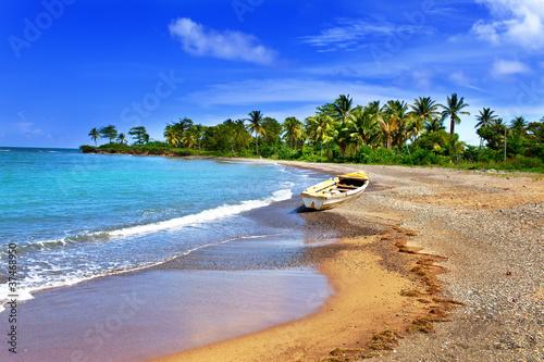 Photo  Jamaica. A national boat on sandy coast of a bay