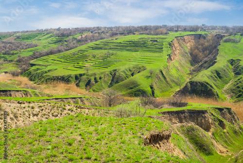 Fotografia Early spring landscape with soil erosion in Ukraine.