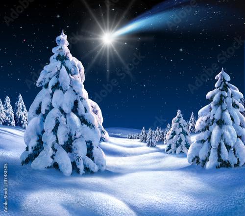 Foto-Doppelrollo - Weihnachtslandschaft 2 (von Xavier)