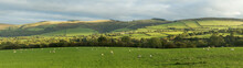 Panoramic View Of The Welsh Co...