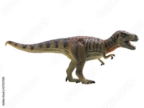 Tela  tyrannosaurus-rex isolated on white background