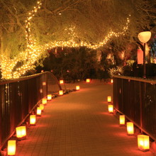 Luminarias Line A Path At Nigh...