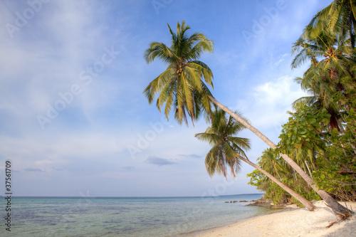 Deurstickers Strand Tropical Beach Karimun jawa Indonesia