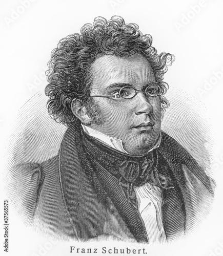 Fotomural  Franz Schubert