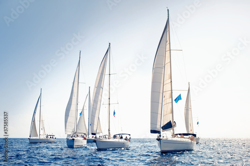 Fotografía  Sailing ship yachts with white sails
