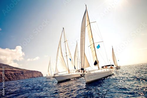 Fototapeta jachty na tle morza