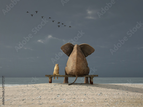 elephant and dog sit on a beach Poster