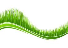 Grass Wave Background