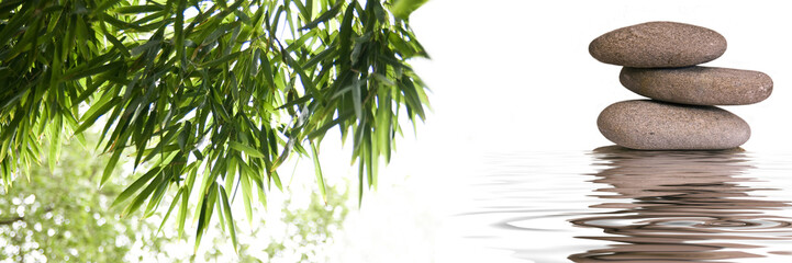 Panel Szklany Liście bannière zen galets bambous