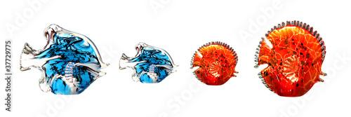 Stampa su Tela pesce di cristallo
