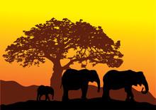 Vectoe Elephants Silhouettes