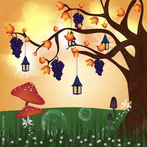 zaczarowana-seria-przyrodnicza-wzgorze-jesienia
