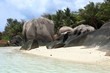 roches granitiques et plage de sable blanc des seychelles