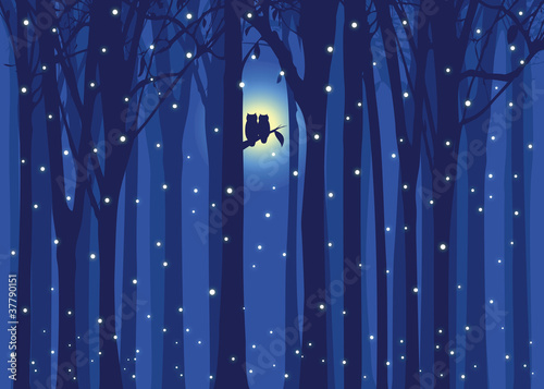 Photo Stands Owls cartoon Winter illustration love owl in snowing forest